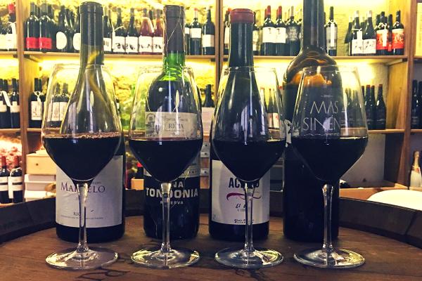Wine Tasting in Barcelona Spanish red wines